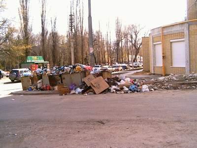 Ужасная ситуация с мусором в Саратове - район Горпарка